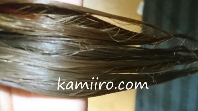 ナンバーロッカン(No.6can)を洗い流した直後の濡れている髪