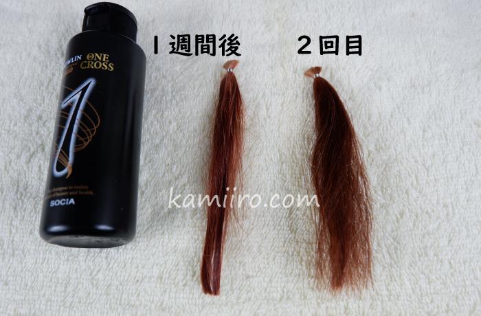 グローリンワンクロスのボトルと1度染めた後、6回シャンプーした人毛白髪毛束と、2度染めた人毛白髪毛束を並べて撮影した写真