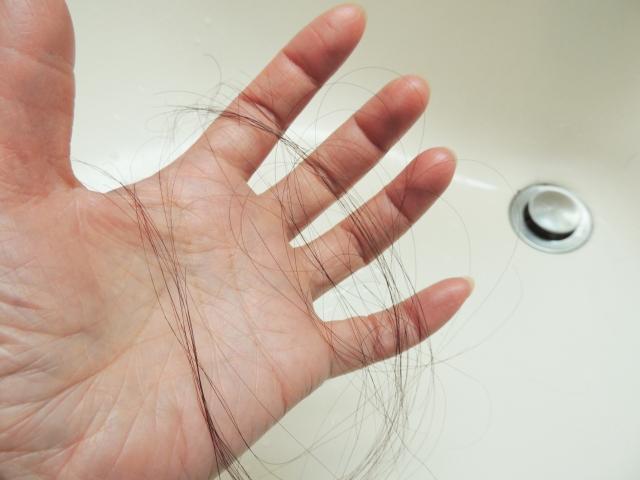 排水溝から手に取った抜け毛
