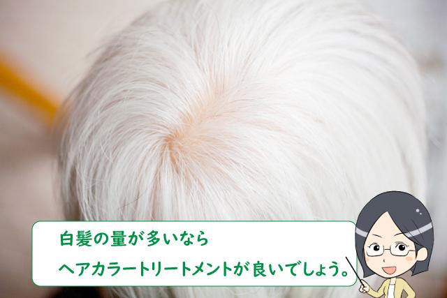 白髪の量が多いならヘアカラートリートメントが良いでしょう。