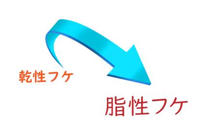 乾性フケ→脂性フケ