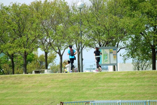 公園をジョギングする人たち