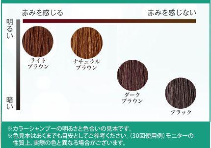 利尻カラーシャンプー全4色の色味表