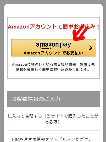ナンバーロッカン公式ページのAmazonペイ申込みボタンのキャプチャ画像
