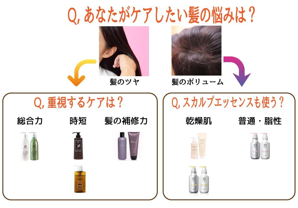 【図解】あなたがケアしたい髪の悩みは?重視するケアは?スカルプエッセンスも使う?